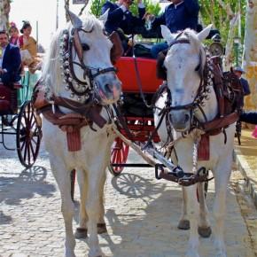 Feria-de-Abril-Sevilla-2012-horses