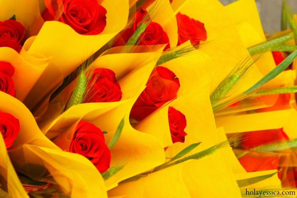 diada-de-sant-jordi-barcelona-roses