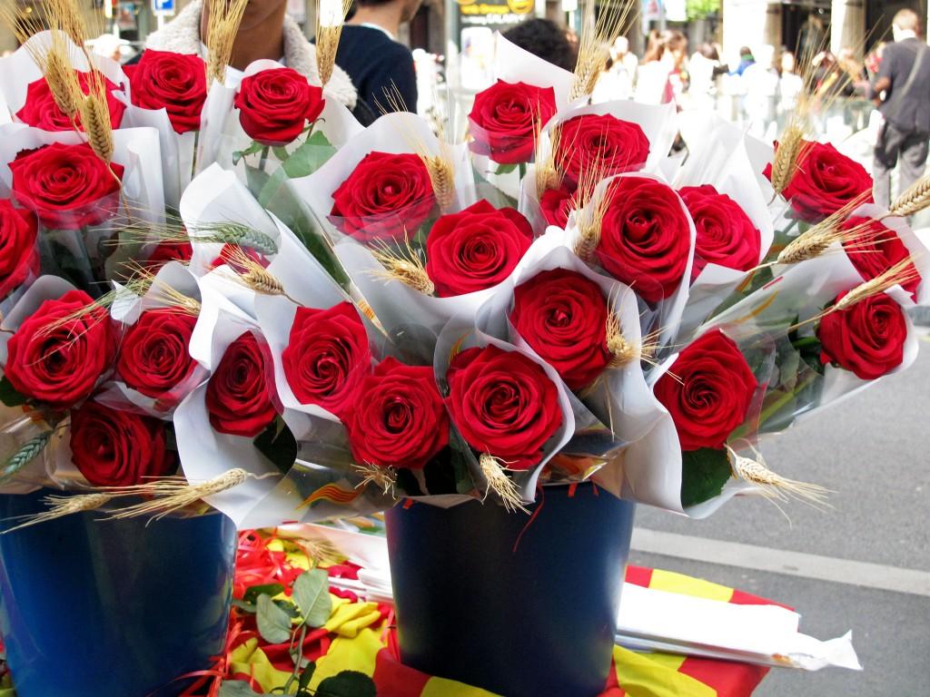 barcelona-sant-jordi-roses-2014