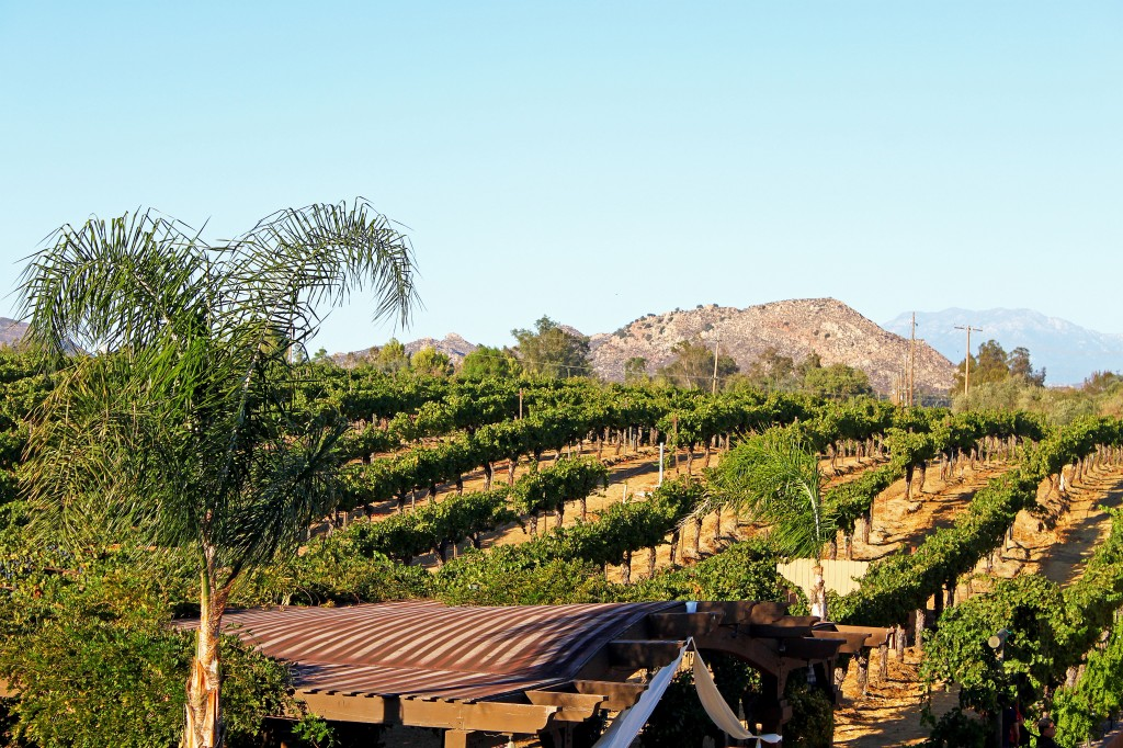wine-tasting-wilson-creek-winery-temecula-california