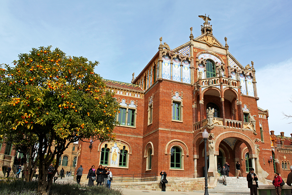 hospital-de-sant-pau-orange-trees