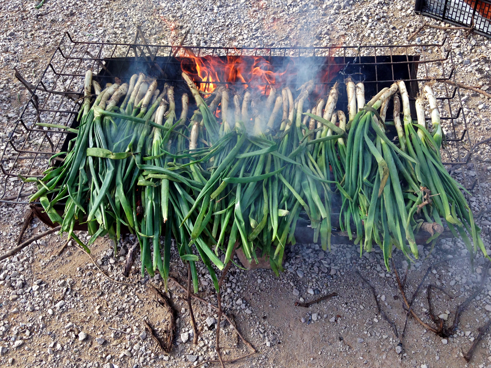 calcotada-calcots-on-grill