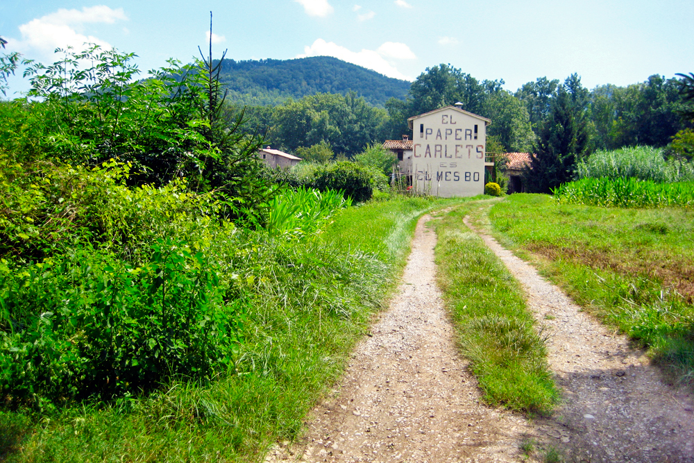 hiking-in-olot-catalonia-things-to-do