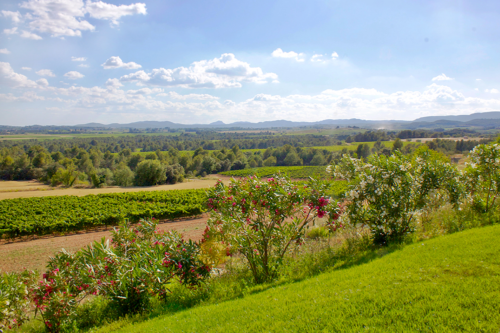 places-to-visit-in-catalonia-penedes-wineries