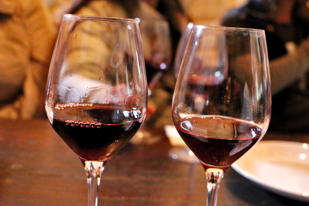 wine-tasting-oller-del-mas-catalonia-trips