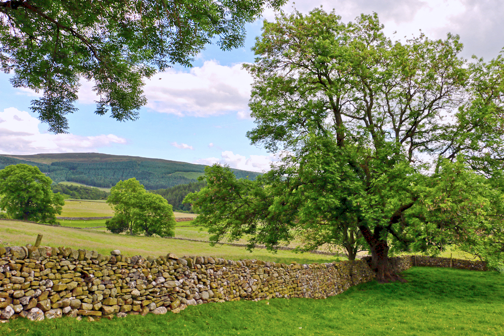 yorkshire-dales-views