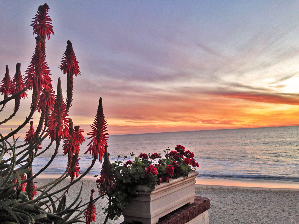 California-sunset-laguna-beach
