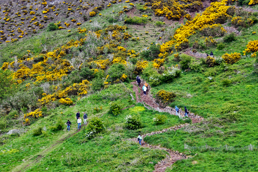 path-to-arthurs-seat-edinburgh