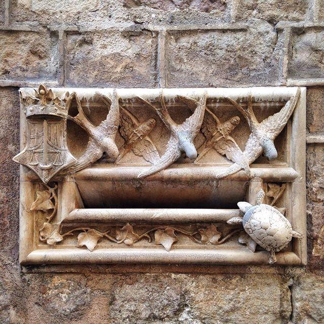 lucky-turtle-casa-de-l-ardiaca-barcelona