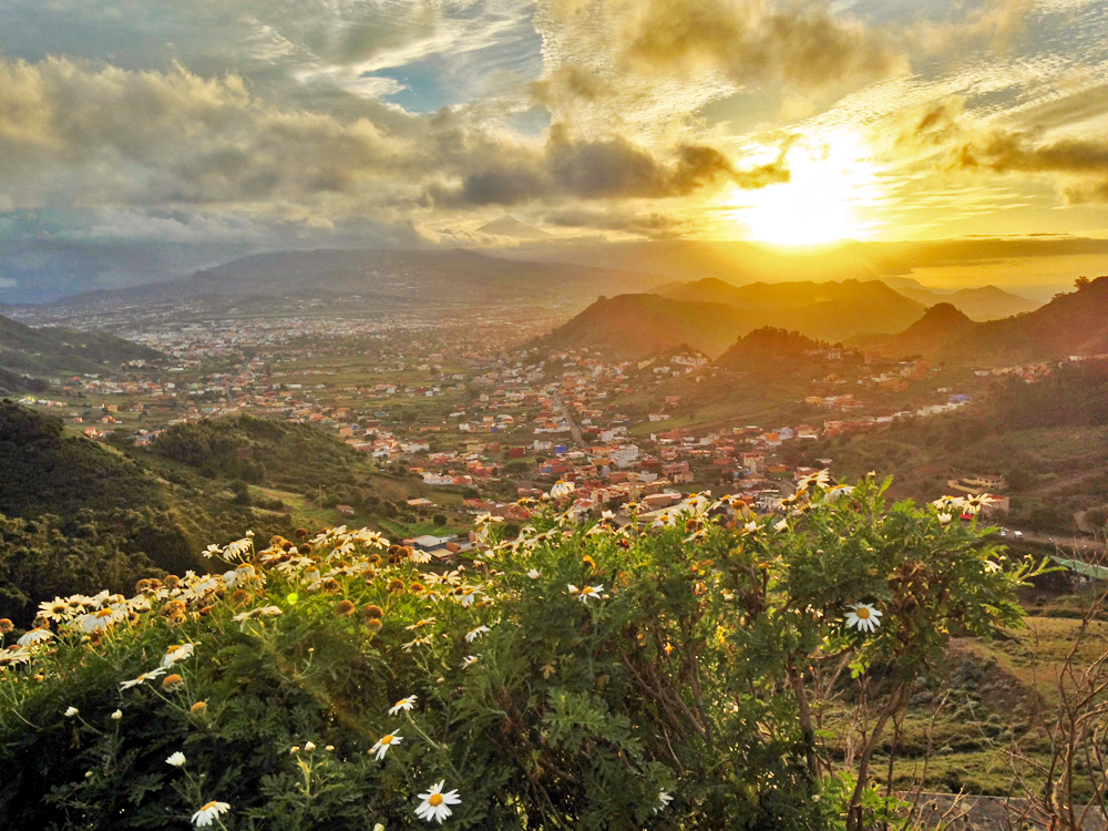 The Magic of Tenerife in 10 Photos